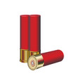 cartridges for rifles vector image