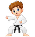 cute little boy doing karate vector image