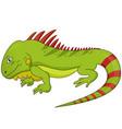 funny iguana lizard reptile animal character vector image
