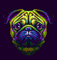 pug abstract multicolored portrait vector image