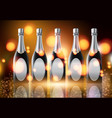 three champagne wine bottles on sparkling vector image