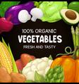 vegetables organic food cartoon poster vector image vector image