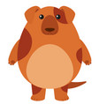 brown dog with happy face vector image vector image