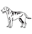 decorative standing portrait of labrador vector image vector image