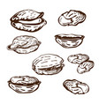 hand drawn pistachio nuts set isolated on white vector image vector image