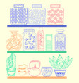 kitchen or pantry shelves with goods vector image vector image