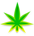 leaf of cannabis or weed on white editable vector image