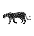 leopardafrican safari single icon in black style vector image vector image