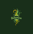 logo with inscription botanica and painted vector image