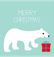 merry christmas text arctic polar bear cub gift vector image vector image