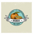 orange vintage hand drawn fresh fruits background vector image