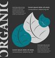 organic food banner vector image vector image
