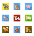 zoo toys hunting and other web icon in flat vector image vector image