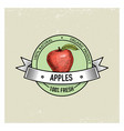 apple vintage hand drawn fresh fruits background vector image