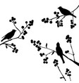 birds on the branch - set of elements vector image vector image