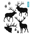black silhouettes a deer on a white background vector image