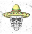 hand drawing hipster skull with sombrero hat vector image vector image