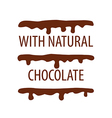 logo cake with natural chocolate vector image vector image