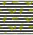 pine tree branches on black striped background vector image vector image