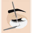procedure for eyelash extension master tweezers vector image vector image