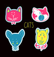 set of cats heads face vector image vector image