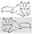 sketch of a cat vector image