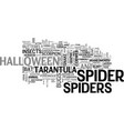 spiders word cloud concept vector image vector image
