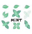 blue mint leafs icons and silhouettes set leaves vector image vector image