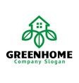 Green Home Design vector image vector image