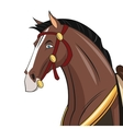 Horse cartoon animal design vector image