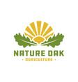natural landscape logo with oak leaves vector image vector image
