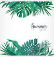 square backdrop or background with green palm and vector image vector image