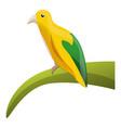 yellow rainforest bird icon cartoon style vector image