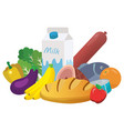 everyday goods and food products vector image