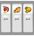 BannerFruits vector image vector image