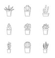 cactus pot icon set outline style vector image vector image