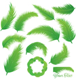 Coconut Leaf vector image