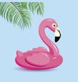 flamingo inflatable and tropical leaves vector image