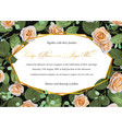 pattern background greeting card wedding vector image