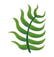 rainforest leaf icon cartoon style vector image