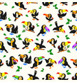 seamless pattern with black toucan vector image