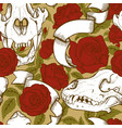 animal skulls and red roses vector image