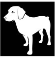 Black and white of hunting dog vector image