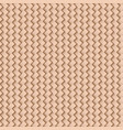 braided background abstract texture seamless vector image vector image