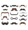 men mustache styles icons vector image vector image