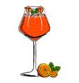 orange cocktail with orange slices vector image