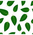 seamless pattern with green summer leaves vector image
