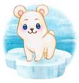 cute polar baby bear on an iceberg floating vector image