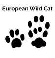 european wild cat footprint vector image vector image