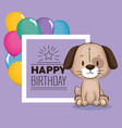 little cute dog birthday card vector image vector image